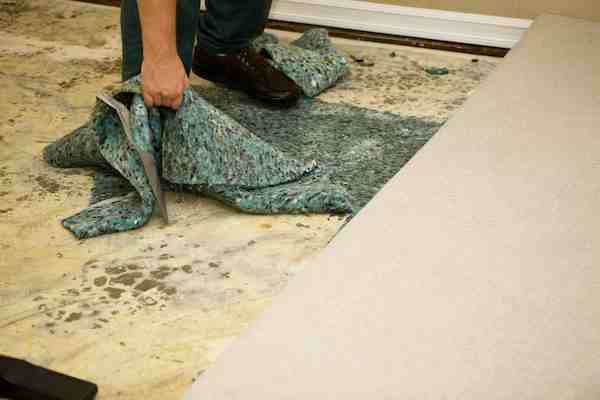 water damage cleanup services